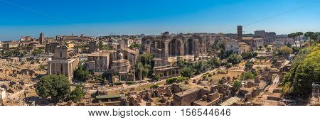 the beautiful Gardens of the Forum Romanum in Rome