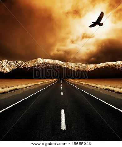 The open road and the soaring bird