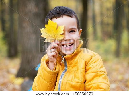 Cute boy smiling and hiding behind yellow leaf