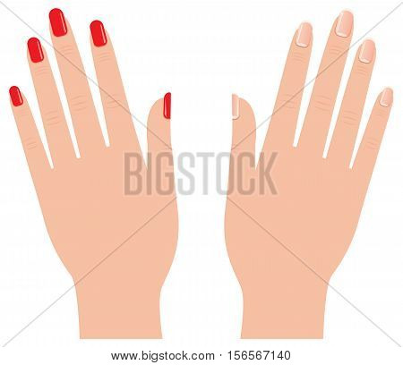 Female hands with different manicure Stock vector illustration