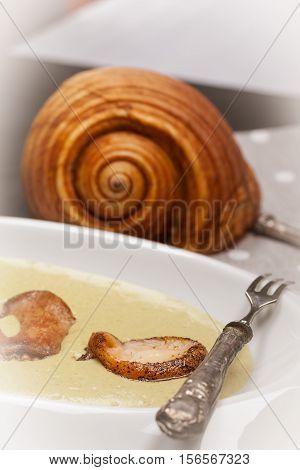 Sea Snail On Leek And Potato Cream