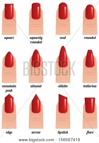 Stock vector illustration on a white background set of nails with nail polish painted red different forms
