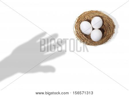Shadow of Hand Reaching for Eggs in Bird Nest