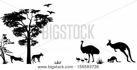 silhouette of wild animals of Australia kangaroo emu and dingos on a white background
