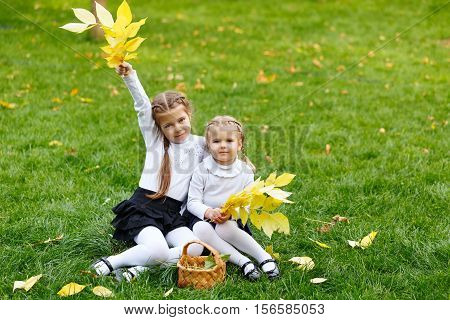 Two cute sisters with wicker basket and leaf litter on the walk in autumn park. The last warm autumn days.