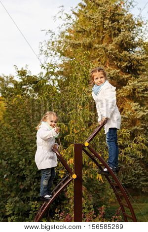 Cute little sisters climbing the ladder to the playground in autumn park. Family time. Sport games.