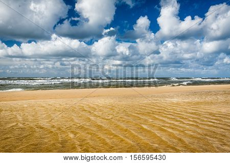 Sandy Beach And North Sea In Summer