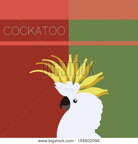 Vector image of the Cockatoo flat postcard