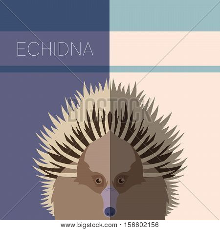 Vector image of the Echidna flat postcard