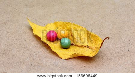 picture of a colorful assortment of shiny round gumballs on an autumn leaf