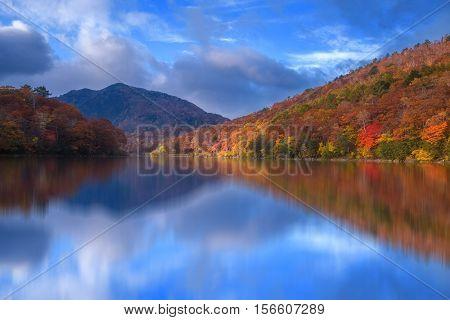 Fall scene at Biwa pond on Shiga-kogen, Yamanouchi-machi, Shimotakai-gun, Nagano, Japan.
