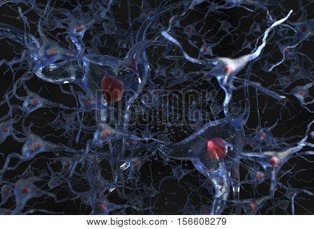 Illustration of human nerve cell net on a black 3d render