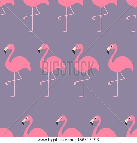 Seamless Pattern Flamingo Exotic tropical bird. Zoo animal collection. Cute cartoon character. Decoration element. Violet background. Flat design. Vector illustration.