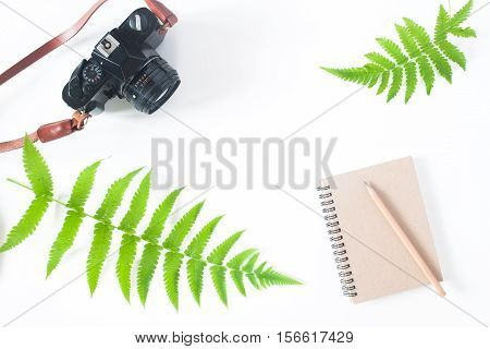 Flat lay of earth tone color notebook pencil camera and fern leaves isolated on white background