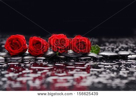 Row of four Red rose and therapy stones