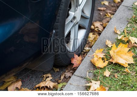 season and transport concept - close up of car wheel and autumn leaves