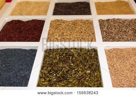 Seeds Assortments Inside White Squared Compartment