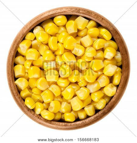 Sweet corn kernels in wooden bowl over white. Cooked canned yellow vegetable maize, Zea mays, also called sugar or pole corn, a vegetarian staple food. Isolated macro food photo close up from above.