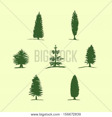 Set of hand drawn sketch trees - pine fir tree cypress. Christmas tree
