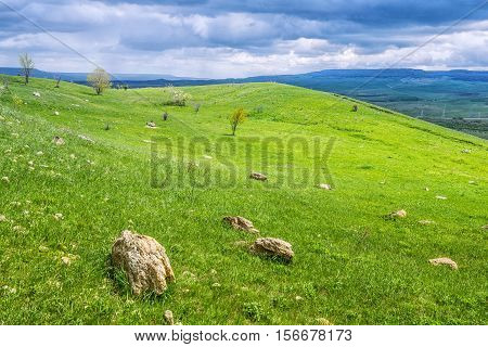 Reserve Strizhament. Flowers in the mountains. Russia Stavropol.