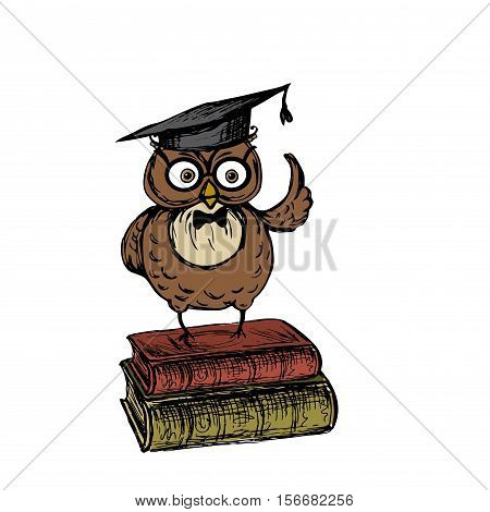 Cute owl with graduation hat standing on the old vintage books, isolated on white background, stock vector illustration
