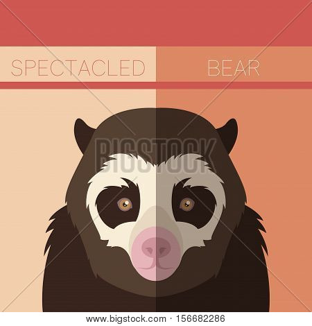 Vector image of the Flat postcard with Spectacled Bear