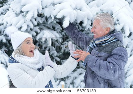 Portrait of happy senior couple having fun in winter park