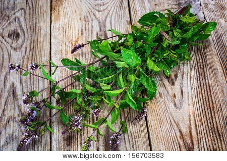 Mint Flowers on Wooden Rustik Background Natural Photo