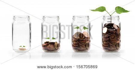 money growing in deposit concept. isolated on white background