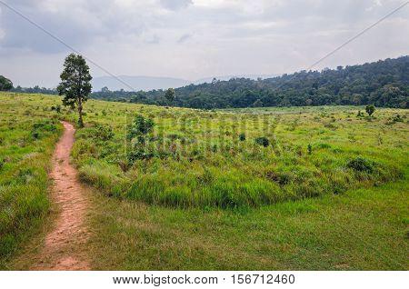 Beautiful landscape in Khao Yai National Park Thailand