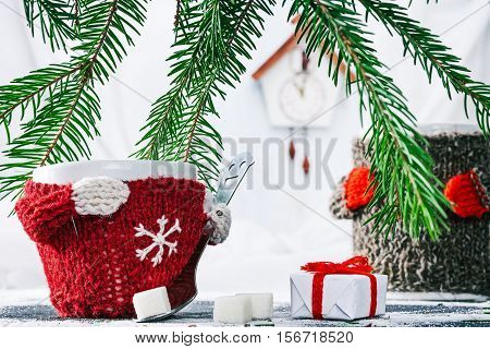 Little cup in wool warmer holding teaspoon with sugar cubes near the gift box under evergreen branches