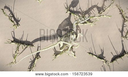 T-Rex-Skeleton lying on the beech 3d rendering