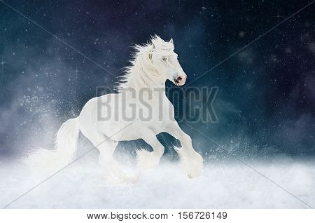 White Shire horse stallion runs gallop over star sky background, art