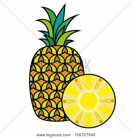 Pineapple isolated on white background. Pineapple Vector. Sliced pineapple. Fruit icon.