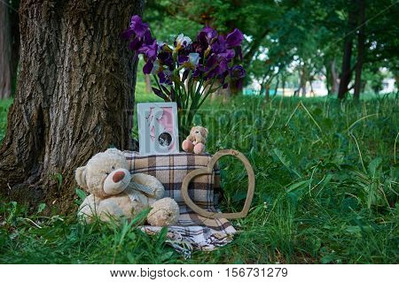 Teddy Bear On The Grass With Flowers.