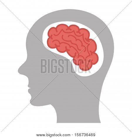 brain storm human organ icon vector illustration design