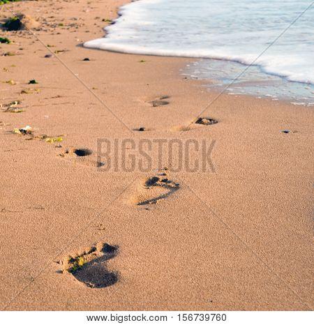 Foot Prints On A Sandy Beach