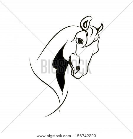 Arab stallion. Horse head on white background vector