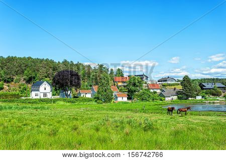 Typical Norwegian house by the fjord surrounded by forest