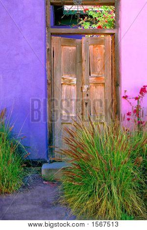 Southwestern Door With Native Plants