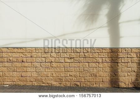 White Wall With Slabs With Shade Of A Palm Tree