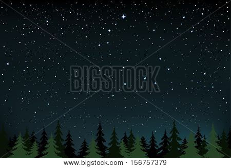 The night wood and space with stars that show a little and the Big Dipper