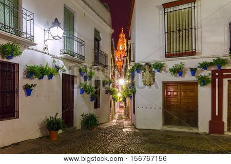 Flowers in flowerpot on the white walls on famous Flower street Calleja de las Flores in old Jewish quarter of Cordoba and Bell Tower Mezquita at night, Andalusia, Spain