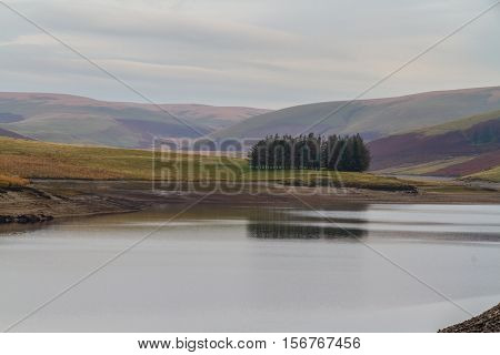 Trees Reflected In The Craig Goch Reservoir, On Edge Of Mid-wales Wilderness.