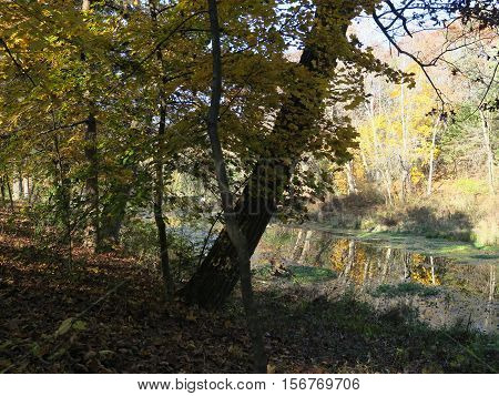 Late fall at Paradise Springs in the southern unit of Kettle Moraine forest in Wisconsin
