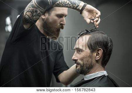 Tattooed barber with a big beard is cutting the hair of his client in the black cape in the barbershop. He wears a black T-shirt. Customer wears a black cutting hair cape with a neck paper.