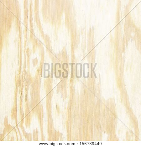 The wood plywood texture background; Wood wall plank vertical texture background