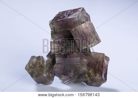 aragonite mineral specimen the gem rock stone