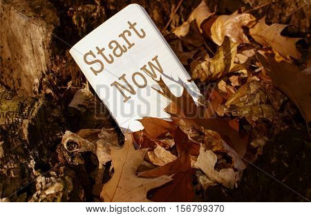 Start making changes, change the world, change your life, lead a healthy lifestyle, words Start Now in a symbolic pile of fallen autumn leaves in warm sunlight