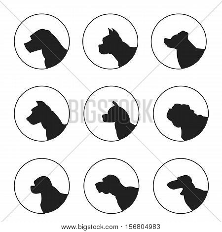 Set of silhouette dogs heads. Akita and bulldog, dachshund and english mastiff, vector illustration